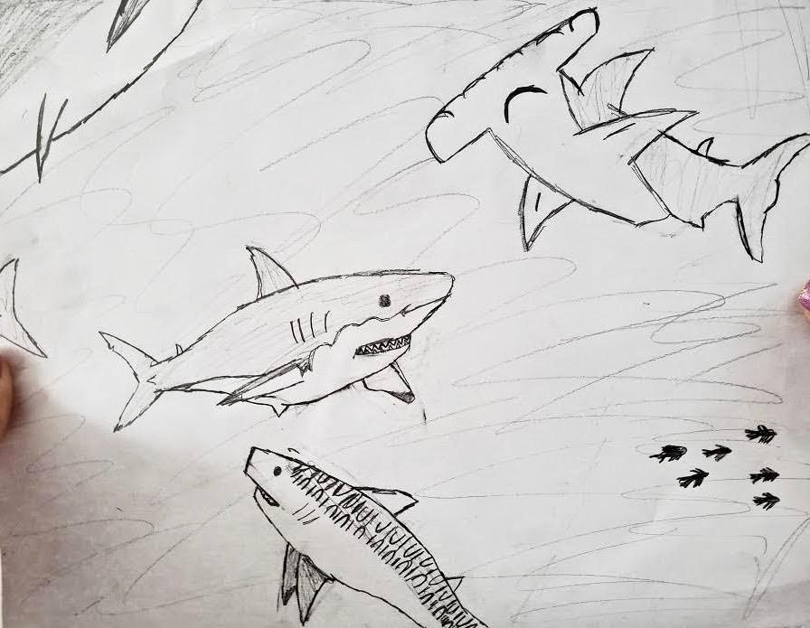 At Home Distance Virtual Aquarium Art Assignment
